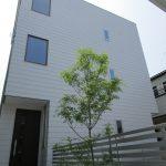 木のぬくもりと窓からの採光が気持ち良い3階建て新築戸建