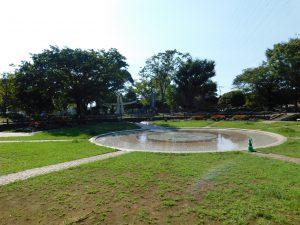 天沼弁天池公園:652m