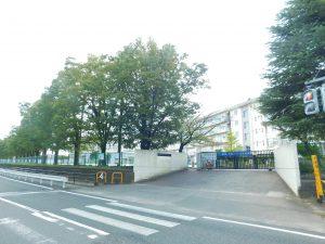 松戸市立横須賀小学校:229m